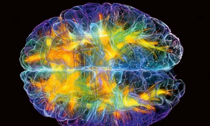 Human brain remains alive for 10 minutes after physical death: Report |www.raah.tv