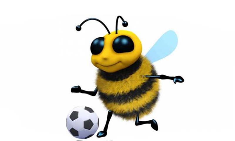 Do you know honey-bee can plays football? |www.raah.tv